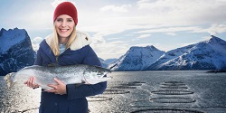 Illustrasjonsfoto: Ole Musken / Norwegian Seafood Council
